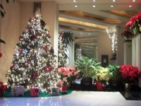 Christmas at The Lauren, A Condominium